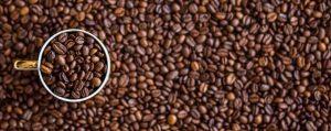 Какая кофемашина лучше рожковая или автоматическая?