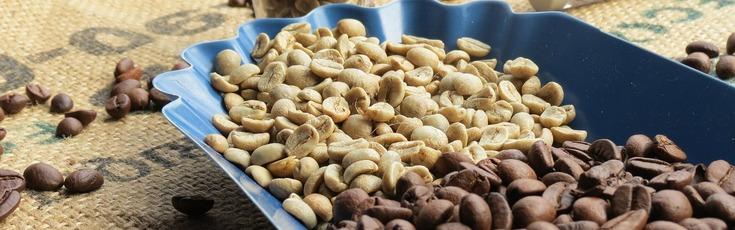 Плотность и влажность зерна – как измерить?