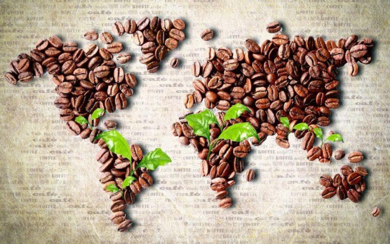 Страны производители кофе