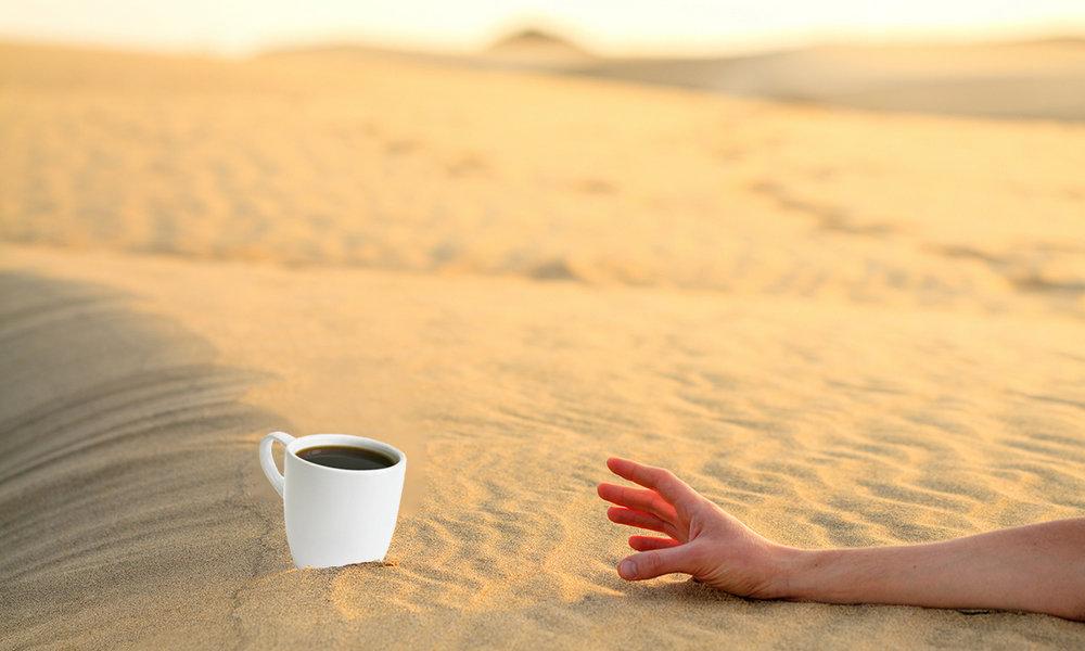 Можно ли пить кофе летом - Coffee Service